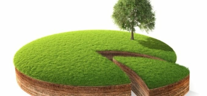 Бывшим гражданам КР могут разрешить иметь землю в Кыргызстане