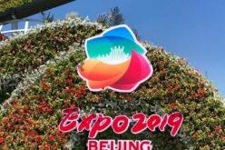 """Кыргызстанда өндүрүлгөн азыктар Кытайдагы """"Экспо-2019"""" көргөзмөсүнө коюлат"""