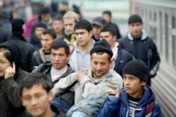 Узбекистан создает единую базу данных трудовых мигрантов