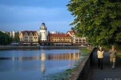 Население Калининградской области увеличилось за счет мигрантов