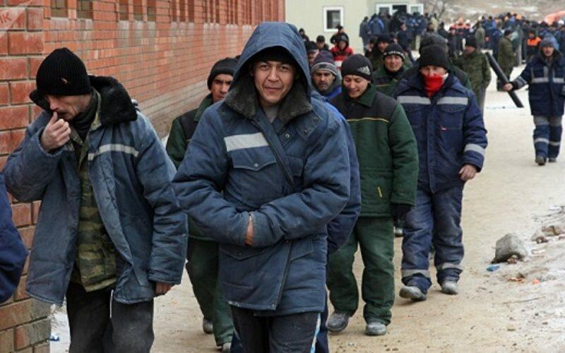 Депутат Госдумы: мигранты за 20 лет наполовину компенсировали убыль населения России