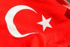 Түркия мыйзамсыз жашаган чет өлкөлүктөрдү депортациялайт
