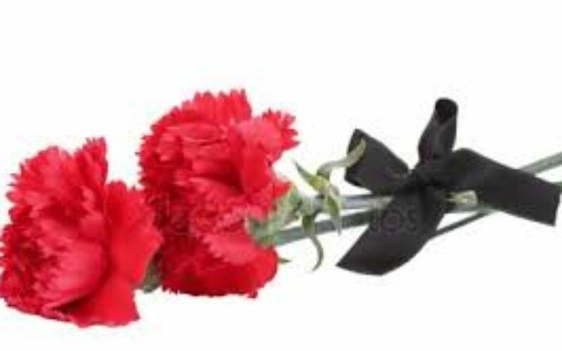 Ассоциация «Замандаш» и соотечественники  выражают соболезнования Мамаевой Октом  в связи с кончиной ее сына