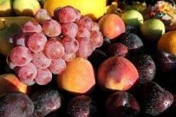 В Россию не пропустили ягоды и фрукты из Кыргызстана