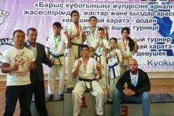 Укыргызстанцев семь медалей намеждународном турнире покарате